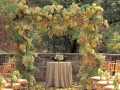 fall-wedding-ceremony-decor-stewart-tabori-chang