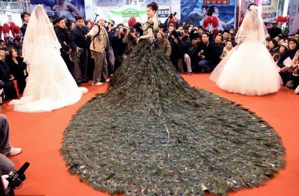 3.-peacock-weddingdress-www.amazingluxurylife.com_