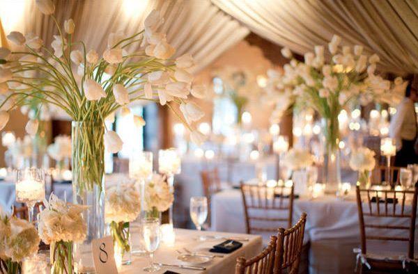 Tulipánová svatba