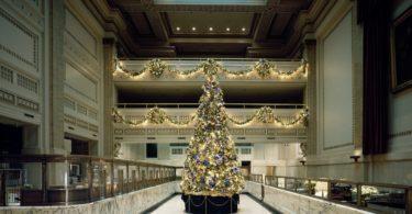 Světelné LED řetězy k Vánocům zkrátka patří